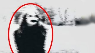 getlinkyoutube.com-5 Scariest YouTube Videos! (Part 2)