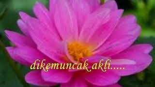 Cinta Melankolia   AaN  lirik