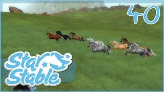 getlinkyoutube.com-The Wild Horses of South Hoof Peninsula!! || Star Stable - Episode #40