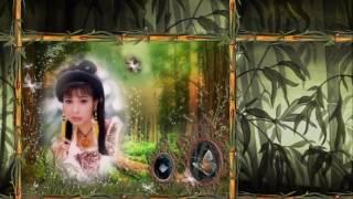 getlinkyoutube.com-Phượng Mai - Ho Quang chi bao