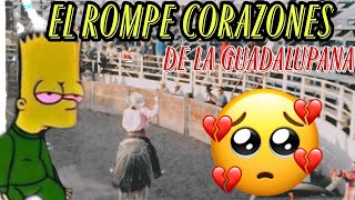getlinkyoutube.com-EL TORO #1 ROMPE CORAZONES DE LA GUADALUPANA