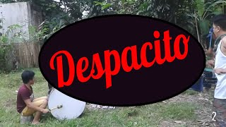 Despacito - Kalibo Ati-Atihan Festival Music and Drumbeats - Drum and Lyre Cover