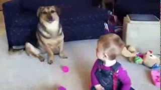 getlinkyoutube.com-Fou rire d'un bébé qui regarde son chien jouer avec des bulles
