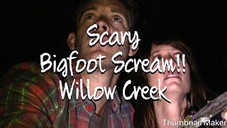 getlinkyoutube.com-Bigfoot Willow Creek scary tent scene