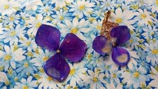 getlinkyoutube.com-生花をUVレジンでアクセサリー 簡単作り方 樹脂加工 コーティング