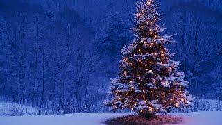 getlinkyoutube.com-Happy Christmas from Killorglin Archive