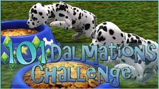 getlinkyoutube.com-Sims 3 || 101 Dalmatians Challenge: A House Full of Puppies! - Episode #11