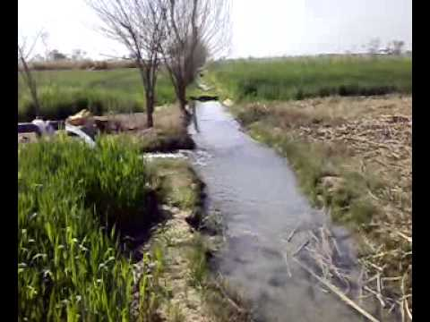 TubeWell, Village in Haroonabad Pakistan