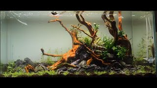 getlinkyoutube.com-Aquascape ADA 90P - a dream come true -