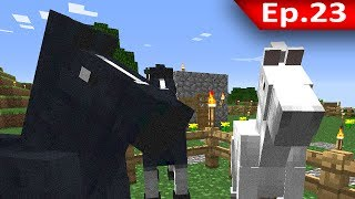 getlinkyoutube.com-Tackle⁴⁸²⁶ Minecraft (1.7.9) #23 - คู่มือการเลี้ยงม้าเบื้องต้น