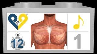 getlinkyoutube.com-مارين لعضلة الصدر تدريب