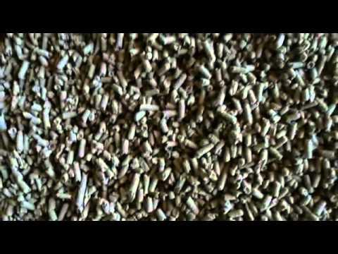 REBI SLU: REBI: Recursos de la biomasa