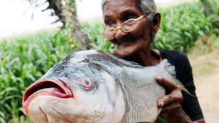 Fish Fry Recipe || Simple and Delicious Fish Fry By My Granny's