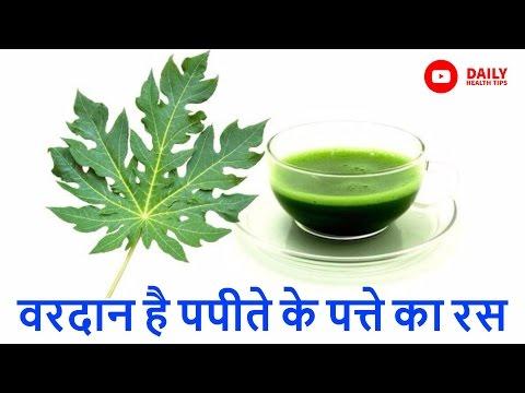 7 रोगों की अचूक औषधि हैं पपीते के पत्ते | Health Benefits of Papaya Leaves in Hindi