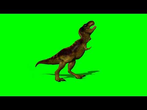 T-rex dinosaur runs - green screen effect