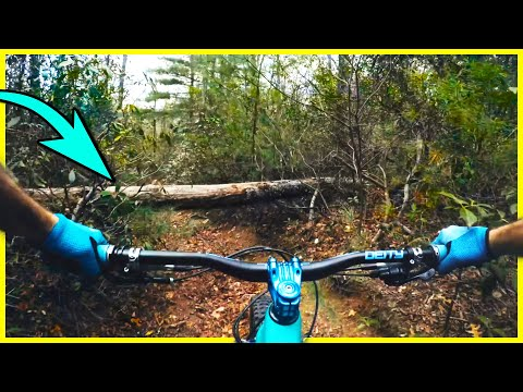 Beehive MTB trail is as nasty as it sounds!  Pisgah | Thrills with Phil