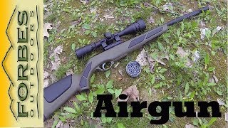getlinkyoutube.com-Fun with a Gamo Air Rifle