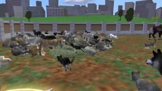 getlinkyoutube.com-zoo tycoon 2 crazy wolf hunt