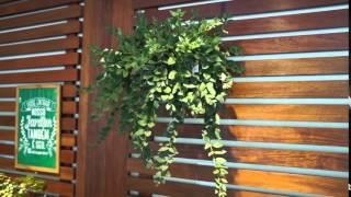 getlinkyoutube.com-Tudo sobre jardins verticais no Fazendo Sala