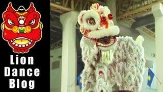 getlinkyoutube.com-2008 Lion Dance Competition - Selangor Selayang Balu Ma Qing Lion Dance