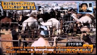 getlinkyoutube.com-イスラムについて About Islam)