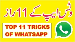 Top 11 new Tips and Tricks of WhatsApp