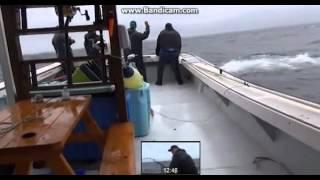 getlinkyoutube.com-ตกปลา ใหญ่ที่สุดในโลก