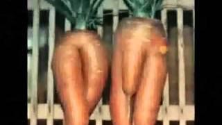 getlinkyoutube.com-funny pictures/ lustige bilder