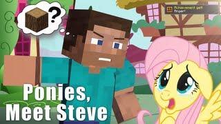 getlinkyoutube.com-Steve Meets Ponies - Minecraft Animation