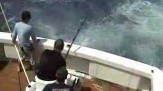 getlinkyoutube.com-450 pound Black Marlin eaten by shark