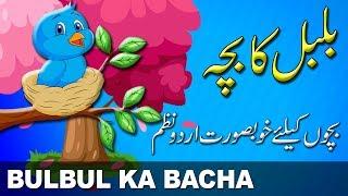 Bulbul Ka Bacha | بلبل کا بچہ | Urdu Nursery Rhyme | Urdu Poem | اردو نظم