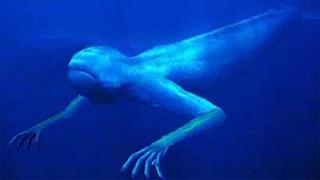 getlinkyoutube.com-10 Deep Sea Cryptids
