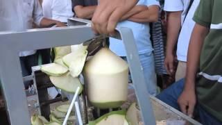 getlinkyoutube.com-coconut trimming machine   Coconut cutting machine   Coconut peeling machine
