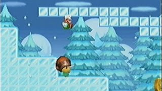 getlinkyoutube.com-Newスーパーマリオブラザーズ(DS)-45「ワールド5 W5-B(隠しコース 隠しゴール含む) 氷のスリップには要注意!」
