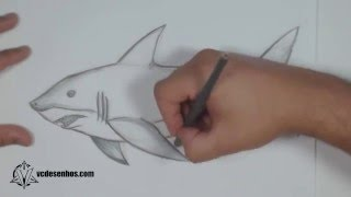 getlinkyoutube.com-Como desenhar Tubarão Realista