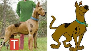 10 Kids Cartoon Characters SEEN IN REAL LIFE