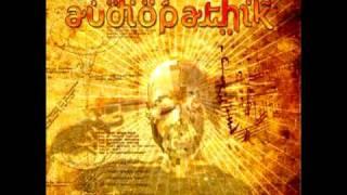 Audiopathik - The Power Stomp