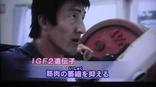 getlinkyoutube.com-朝原宣治 遺伝子