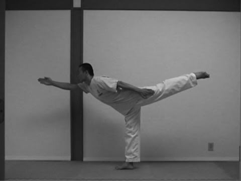 Yoga Stretching for the Taekwondo (taekwonwoo)