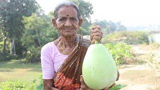 getlinkyoutube.com-How To Cook Bottle Gourd Recipe in Village Style || Myna Street Food || Food Info
