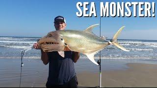 getlinkyoutube.com-How to Catch a Sea beast - Surf Fishing PINS