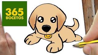 getlinkyoutube.com-COMO DIBUJAR UN PERRO LABRADOR PASO A PASO: Os enseñamos a dibujar un perro fácil para niños