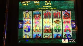 getlinkyoutube.com-Aristocrat Whales of Cash Slot: Free Games Bonus