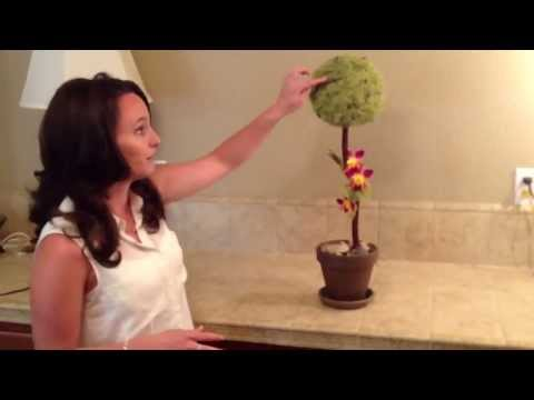 Buy Moss Topiary|Affordable Manzanita Branch Moss Topiary for Sale in Sacramento California