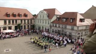 6. Musikfest Teterow 2016 - Aufmarsch Schalmeienorchester Taucha