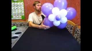 getlinkyoutube.com-Большой цветок из воздушных шаров (Large flower of balloons)
