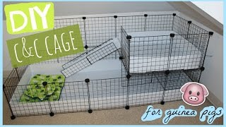 getlinkyoutube.com-DIY C&C guinea pig cage │Alexandriasanimals