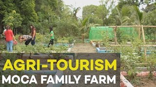 getlinkyoutube.com-Agri tourism : MoCa Family Farm, agribusiness ideas in the Philippines