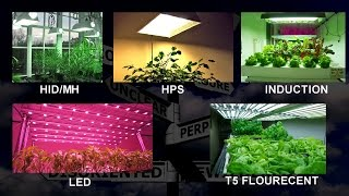 getlinkyoutube.com-Choosing a Grow Light - Things to think about
