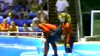 getlinkyoutube.com-Attack of trainer Seaworld 2004